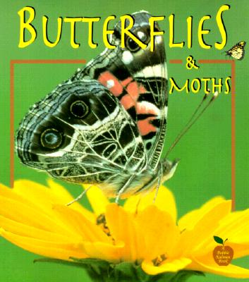 Butterflies and Moths By Kalman, Bobbie/ Everts, Tammy